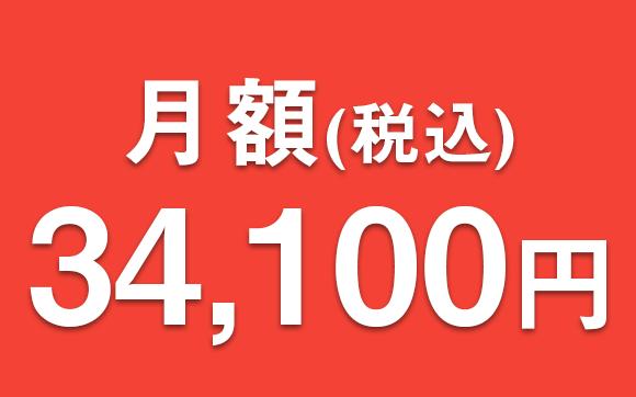 月額34,100円(税込)