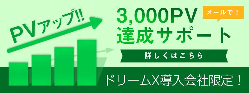 3000PV達成サポート ドリームX導入会社限定!