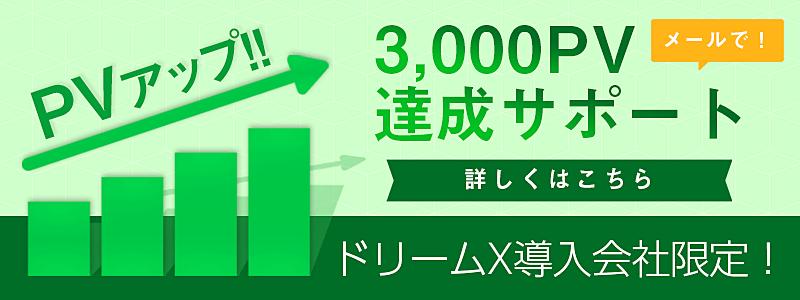 月間3000PVサポート