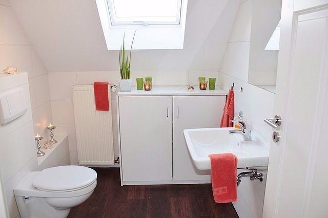 マツコデラックスは広いトイレの部屋が好き
