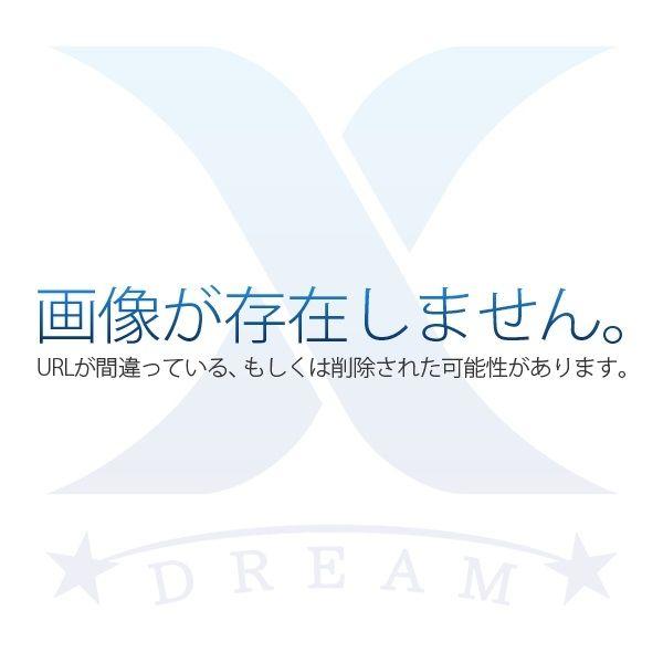 ヤマモト地所様のドリームXのページのイメージ図